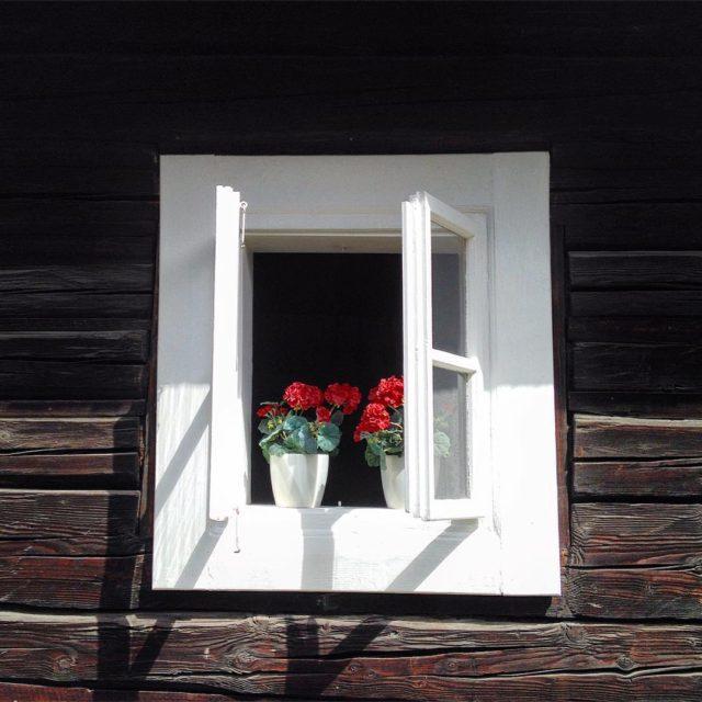 Okn Ninej Boce XI