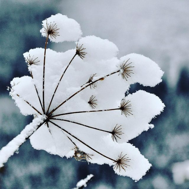 V Ninej Boci zana zima Autor fotky Vladimr Sak