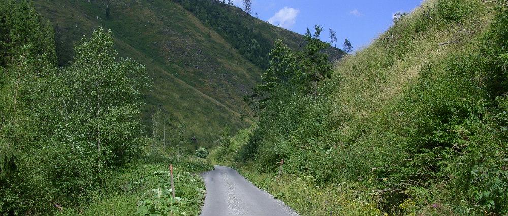 Malužinská dolina (zdroj: panoramio.com/minostefo81)