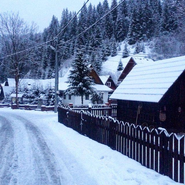 Zimn skor veer v Ninej Boci